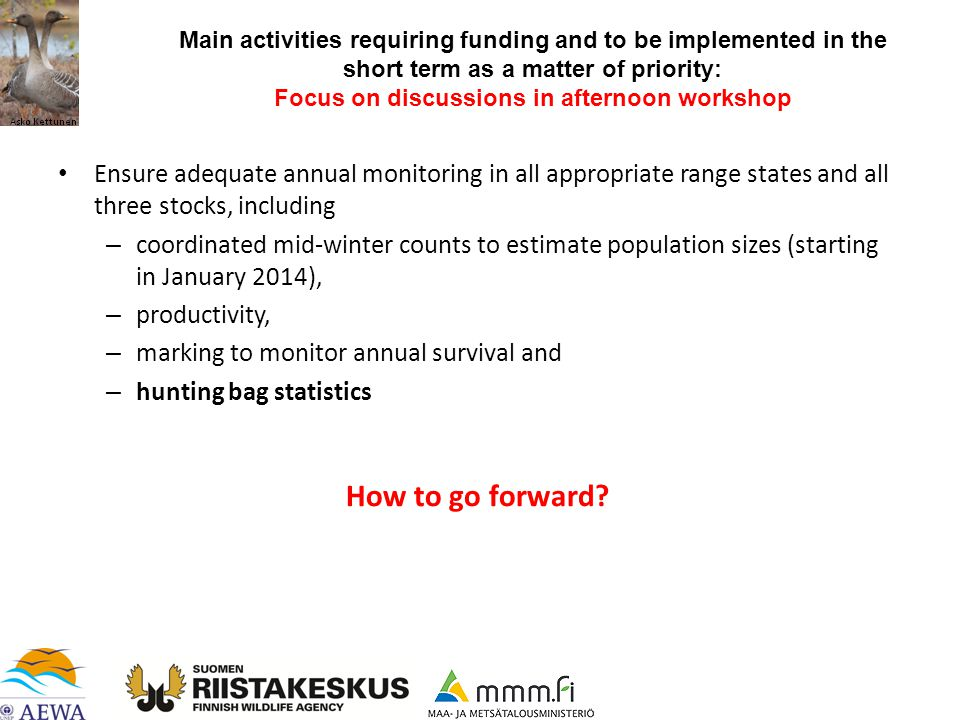 Ensure adequate annual monitoring in all appropriate range states and all three stocks, including – coordinated mid-winter counts to estimate population sizes (starting in January 2014), – productivity, – marking to monitor annual survival and – hunting bag statistics How to go forward.
