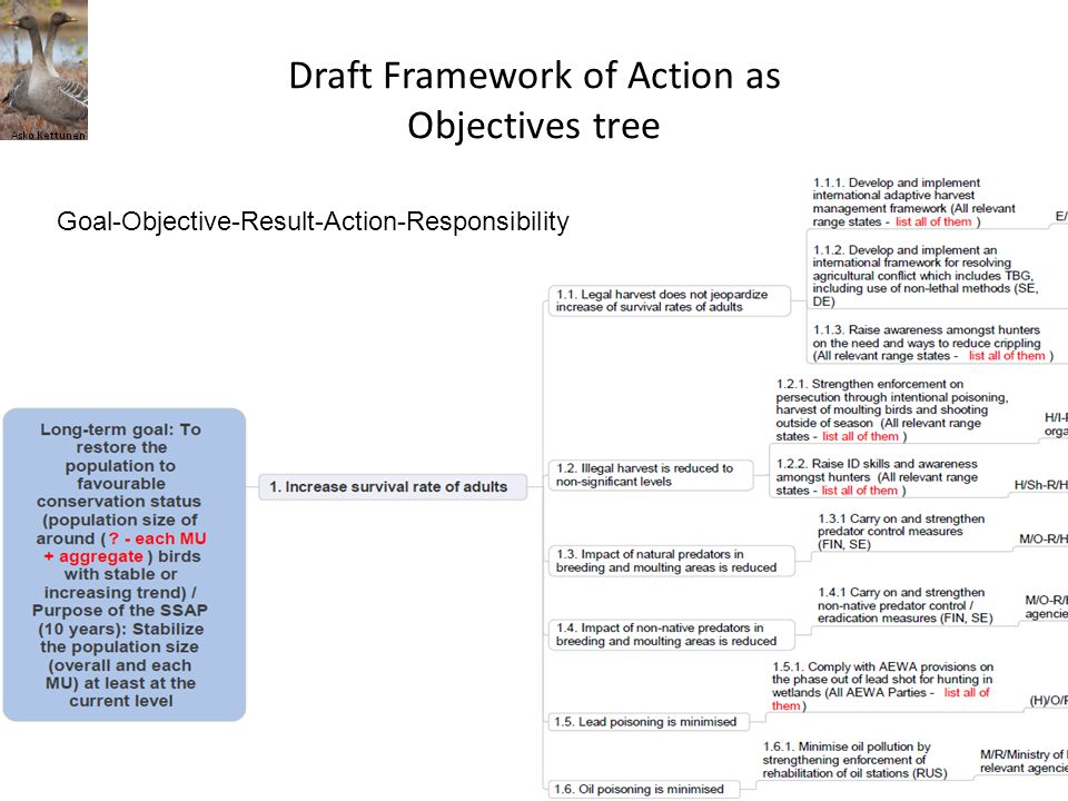 Draft Framework of Action as Objectives tree Goal-Objective-Result-Action-Responsibility