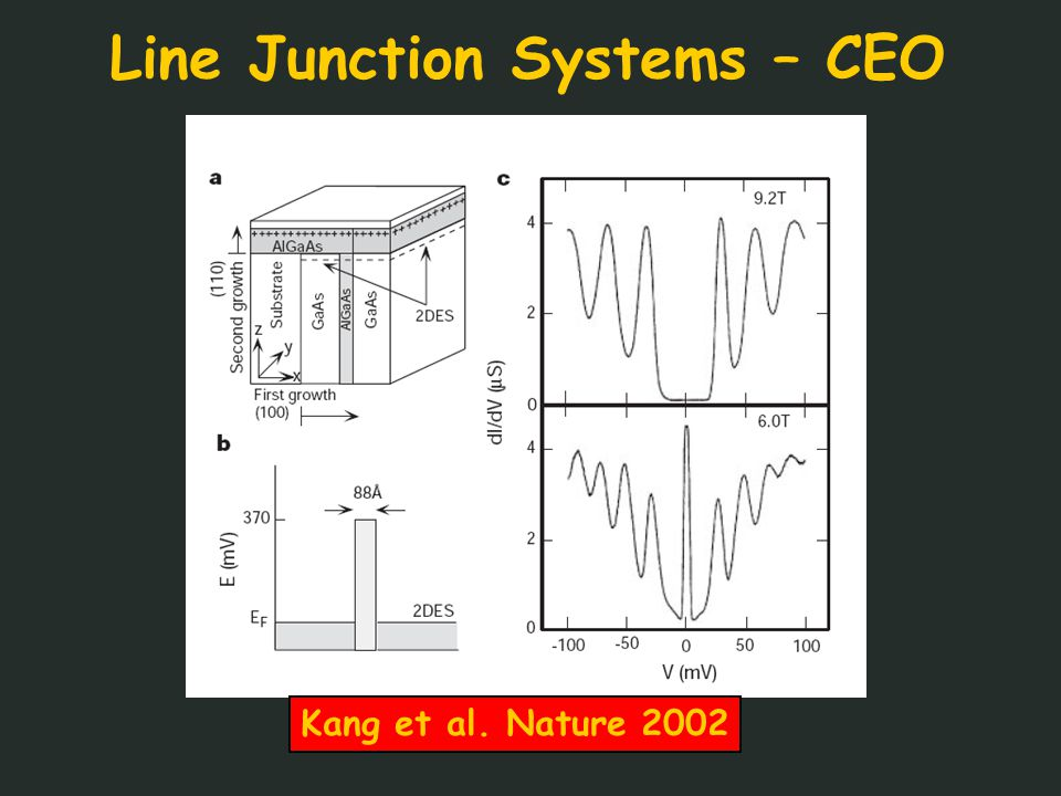 Line Junction Systems – CEO Kang et al. Nature 2002