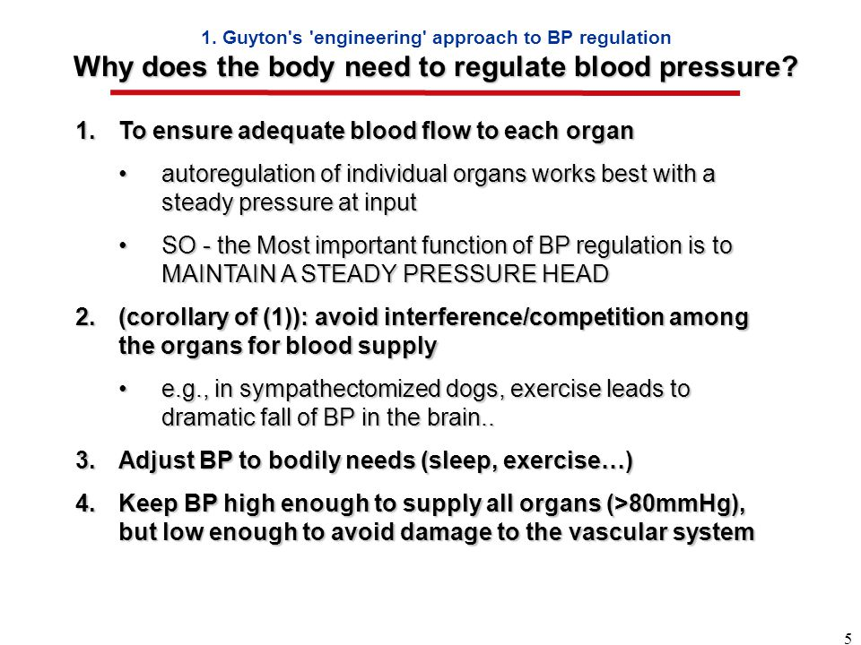 5 Why does the body need to regulate blood pressure.