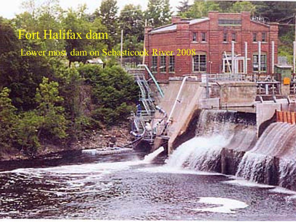 Fort Halifax dam Lower most dam on Sebasticook River 2008
