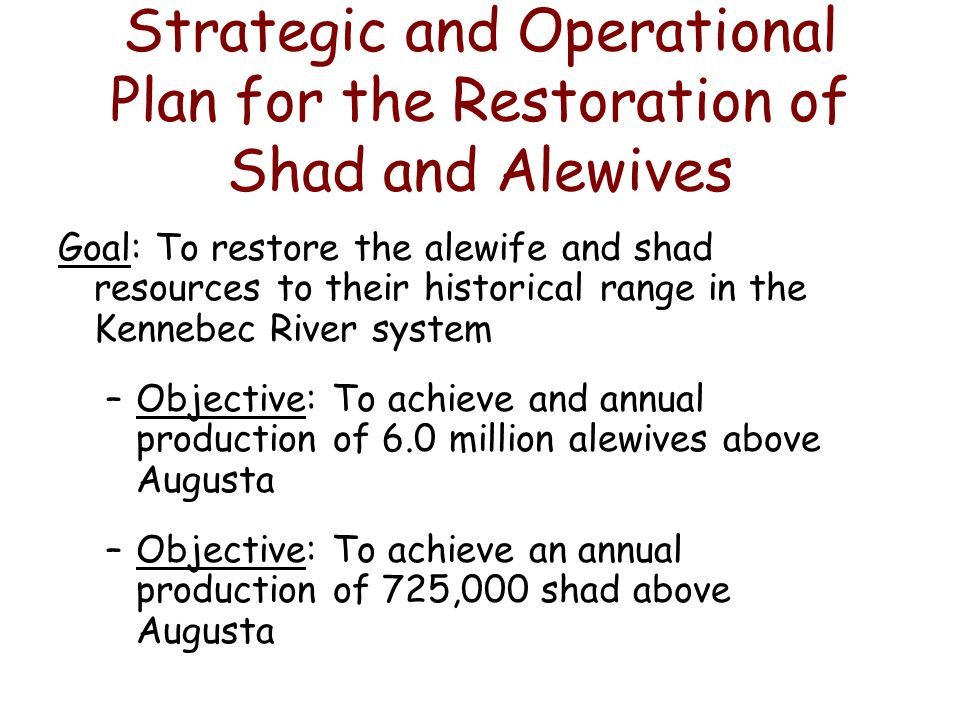 Strategic and Operational Plan for the Restoration of Shad and Alewives Goal: To restore the alewife and shad resources to their historical range in the Kennebec River system –Objective: To achieve and annual production of 6.0 million alewives above Augusta –Objective: To achieve an annual production of 725,000 shad above Augusta