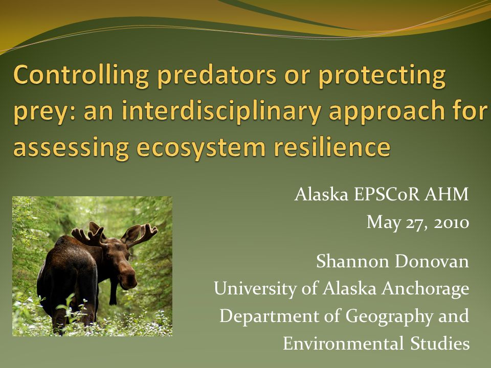 The Issues: They are Complex Predator control occurs across many Northwest states and Alaska Gray wolves were delisted from the Federal ESA Prey (caribou and moose) populations seem to be decreasing/fluctuating in some areas Different management strategies employed on different land types and by different agencies Problematic for sport and subsistence hunting Little is known/agreed upon about existing numbers of predators and prey Highly controversial topic Need for biological, economical and social baseline data