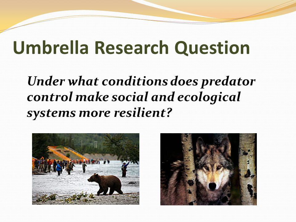 Sub-Topics Predator-prey relationships Carrying capacity (habitat) Migration (in and out of local areas and across land types) Fire and fire management Predator management and policies: different rules in different lands Public opinions and stakeholder values Rule making processes