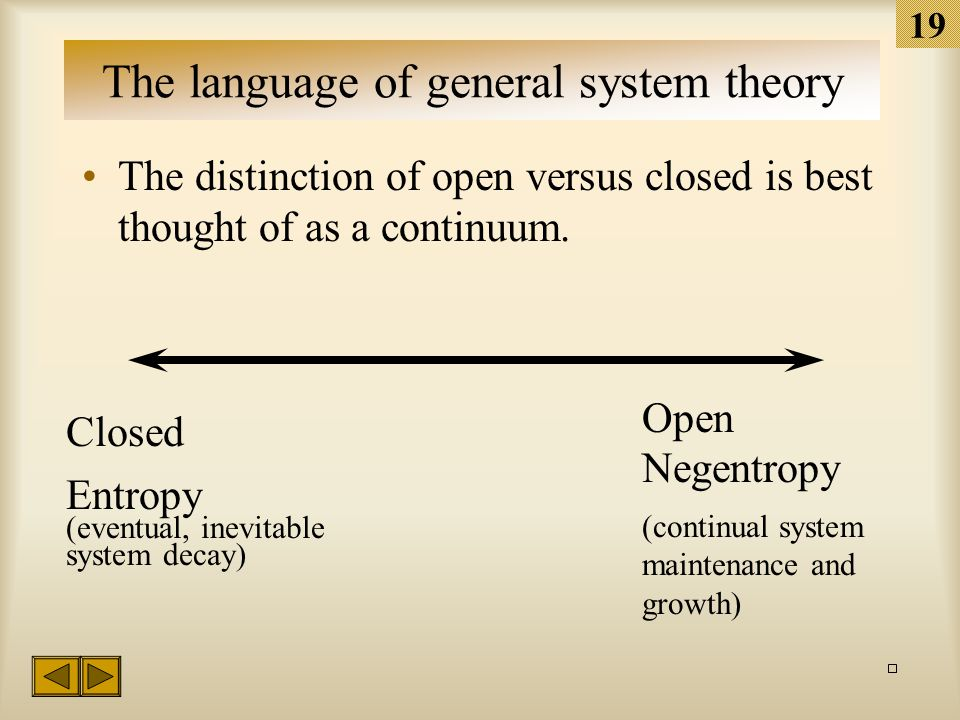 18 The language of GST Two types of systems: Open system Interacts freely with its environment through a process of inputs-throughputs-outputs.
