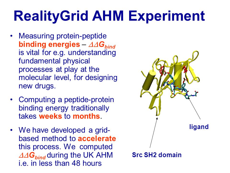 Experiment Details A Grid based approach, using the RealityGrid steering library enables us to launch, monitor, checkpoint and spawn multiple simulations Each simulation is a parallel molecular dynamic simulation running on a supercomputer class machine At any given instant, we had up to nine simulations in progress (over 140 processors) on machines at 5 different sites: e.g 1x TG-SDSC, 3x TG-NCSA, 3x NGS-Oxford, 1x NGS-Leeds, 1x NGS-RAL