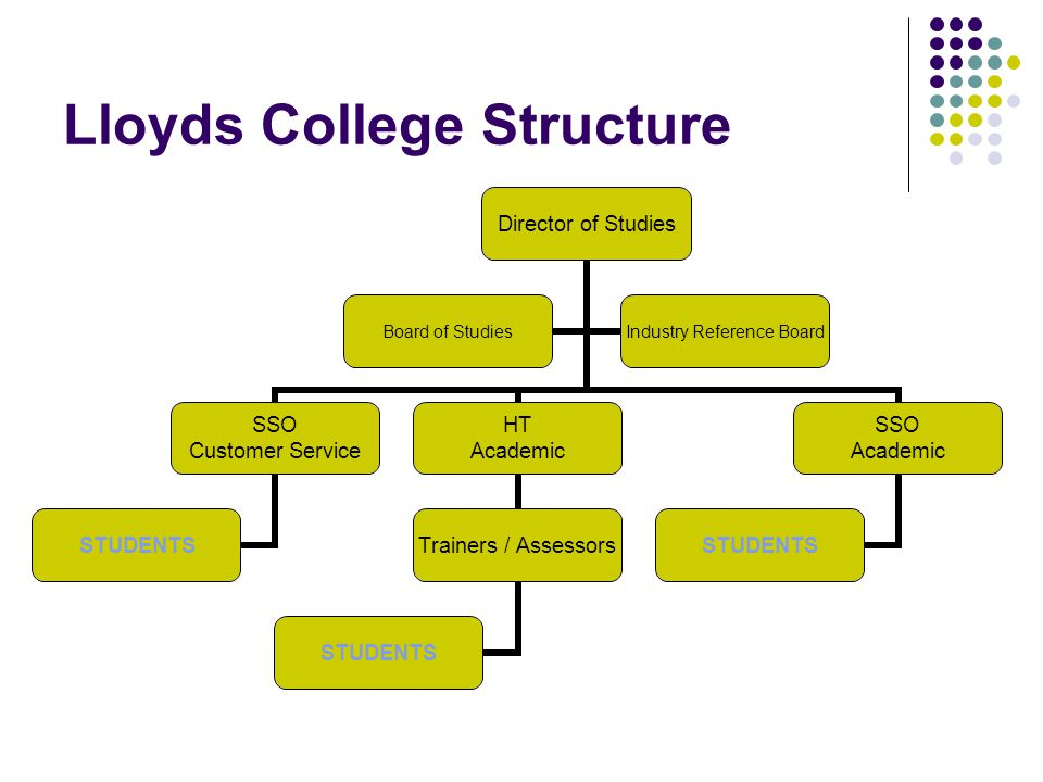 Lloyds College Structure Director of Studies SSO Customer Service STUDENTS HT Academic Trainers / Assessors STUDENTS SSO Academic STUDENTS Board of Studies Industry Reference Board