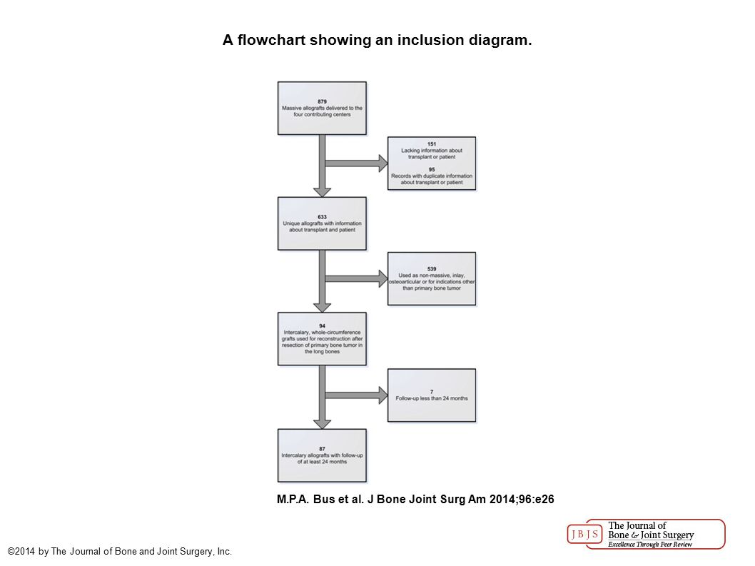 A flowchart showing an inclusion diagram. M.P.A. Bus et al.