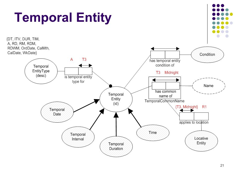 21 Temporal Entity