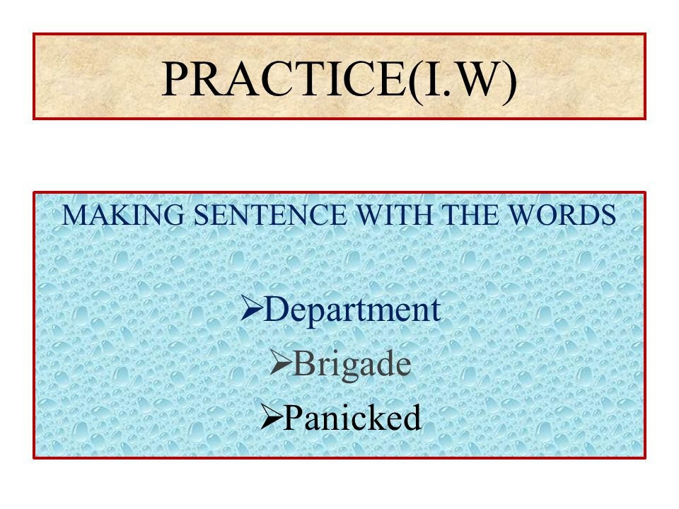 PRACTICE(I.W) MAKING SENTENCE WITH THE WORDS  Department  Brigade  Panicked