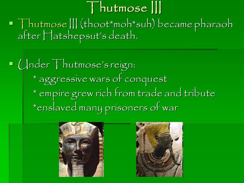 The Legacies of Two Pharaohs (pgs.