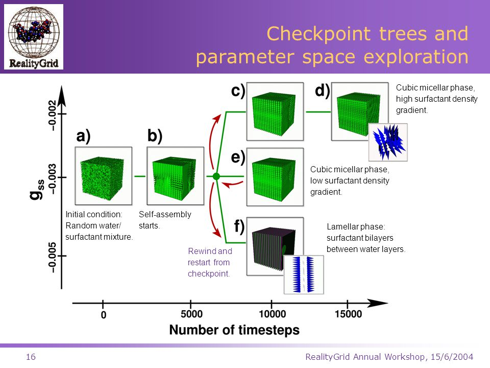 RealityGrid Annual Workshop, 15/6/200416 Checkpoint trees and parameter space exploration Initial condition: Random water/ surfactant mixture.
