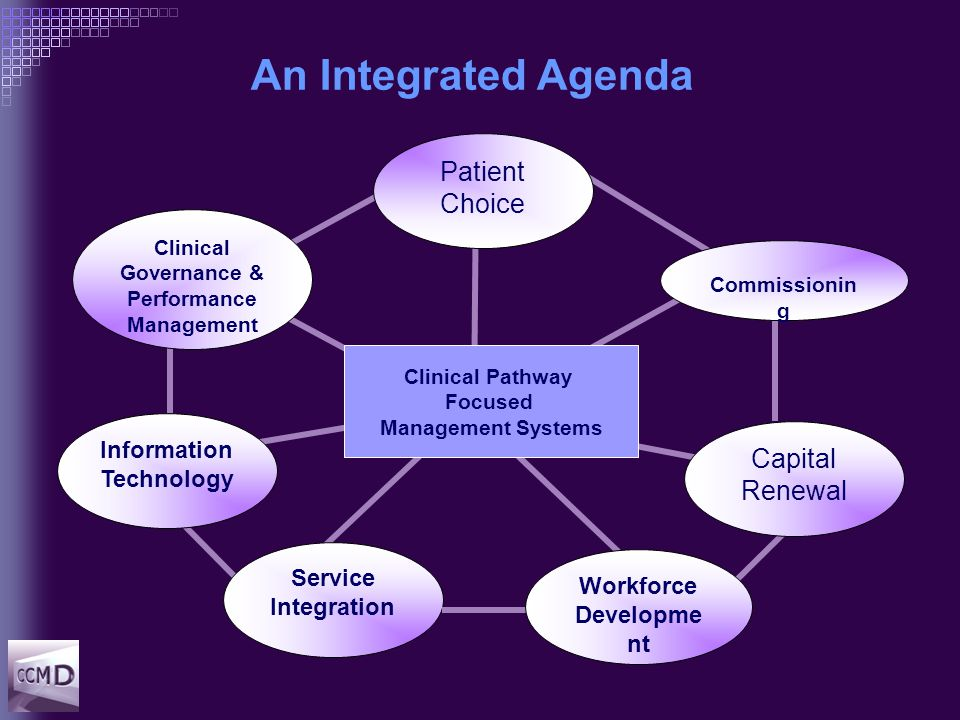 An Integrated Agenda Patient Choice Service Integration Workforce Developme nt Clinical Pathway Focused Management Systems Capital Renewal Commissionin g Clinical Governance & Performance Management Information Technology