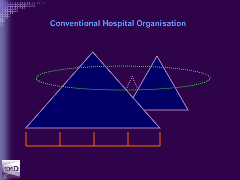 Conventional Hospital Organisation