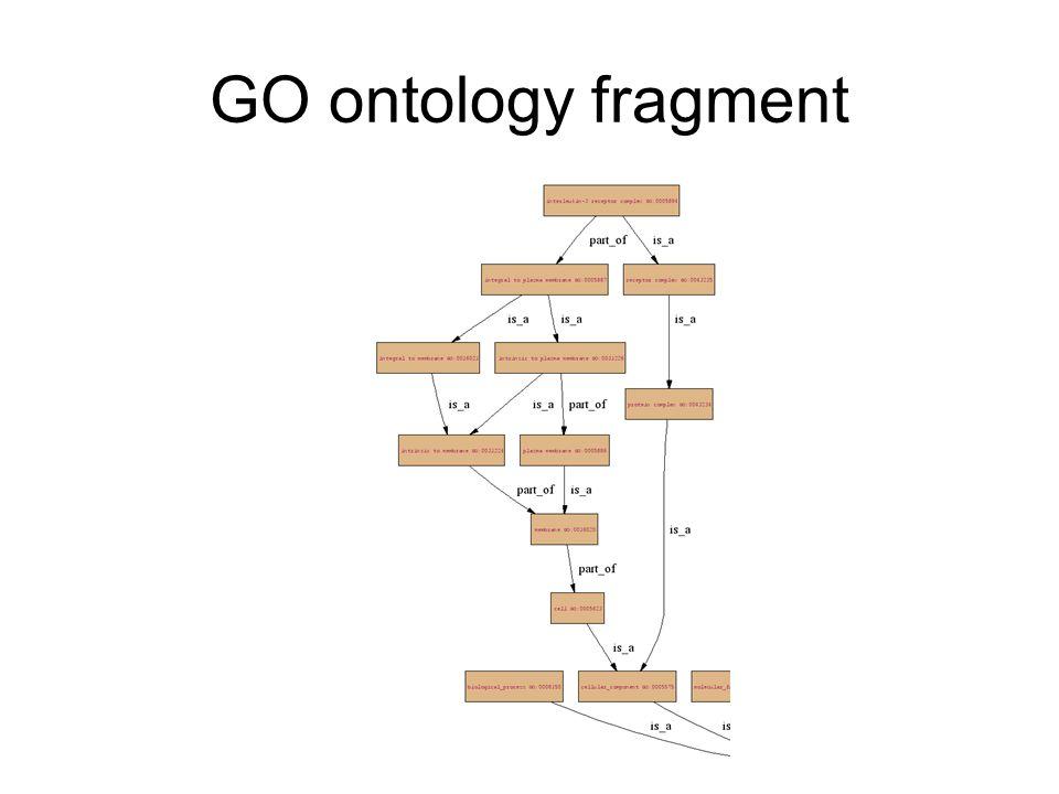 GO ontology fragment