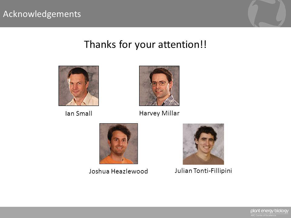 Acknowledgements Ian Small Harvey Millar Joshua Heazlewood Julian Tonti-Fillipini Thanks for your attention!!