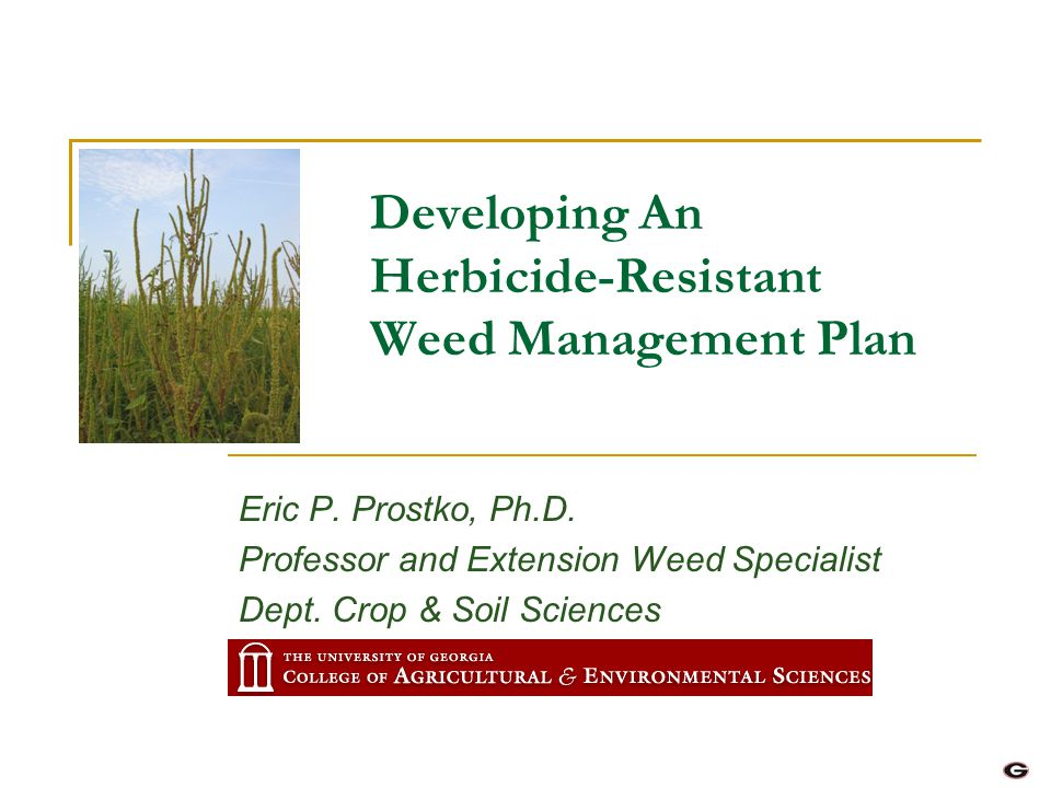 Developing An Herbicide-Resistant Weed Management Plan Eric P. Prostko, Ph.D. Professor and Extension Weed Specialist Dept. Crop & Soil Sciences
