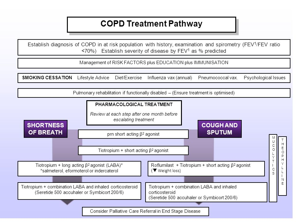 COPD Treatment Pathway Establish diagnosis of COPD in at risk population with history, examination and spirometry (FEV 1 /FEV ratio <70%) Establish severity of disease by FEV 1 as % predicted Management of RISK FACTORS plus EDUCATION plus IMMUNISATION Pulmonary rehabilitation if functionally disabled – (Ensure treatment is optimised) SMOKING CESSATION Lifestyle Advice Diet/Exercise Influenza vax (annual) Pneumococcal vax.