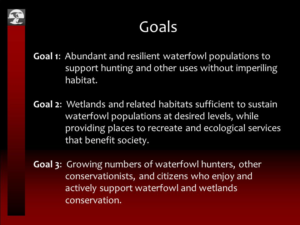 Goals Goal 1: Abundant and resilient waterfowl populations to support hunting and other uses without imperiling habitat. Goal 2: Wetlands and related