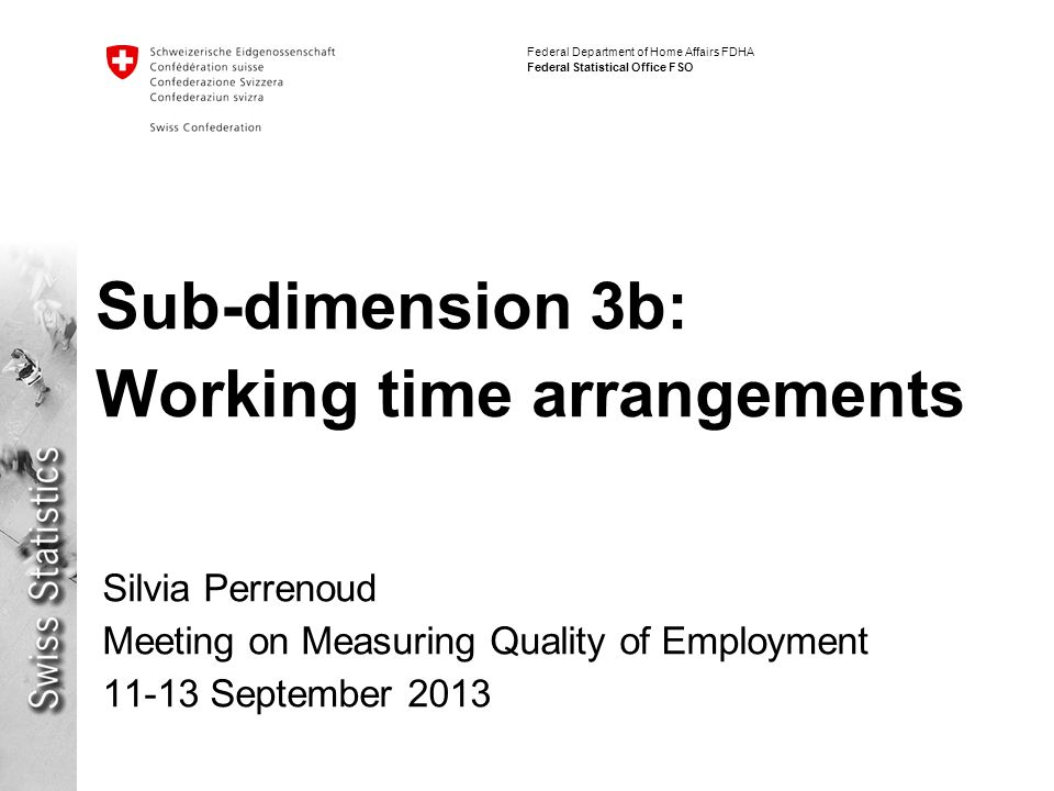 Federal Department of Home Affairs FDHA Federal Statistical Office FSO Sub-dimension 3b: Working time arrangements Silvia Perrenoud Meeting on Measuring Quality of Employment 11-13 September 2013