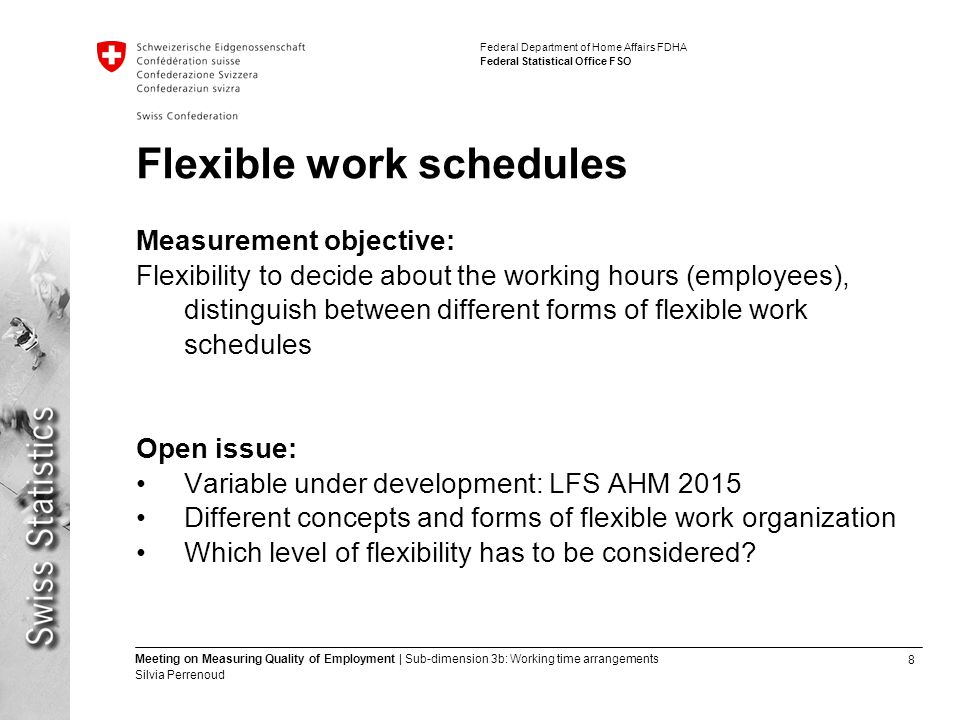8 Meeting on Measuring Quality of Employment | Sub-dimension 3b: Working time arrangements Silvia Perrenoud Federal Department of Home Affairs FDHA Federal Statistical Office FSO Flexible work schedules Measurement objective: Flexibility to decide about the working hours (employees), distinguish between different forms of flexible work schedules Open issue: Variable under development: LFS AHM 2015 Different concepts and forms of flexible work organization Which level of flexibility has to be considered