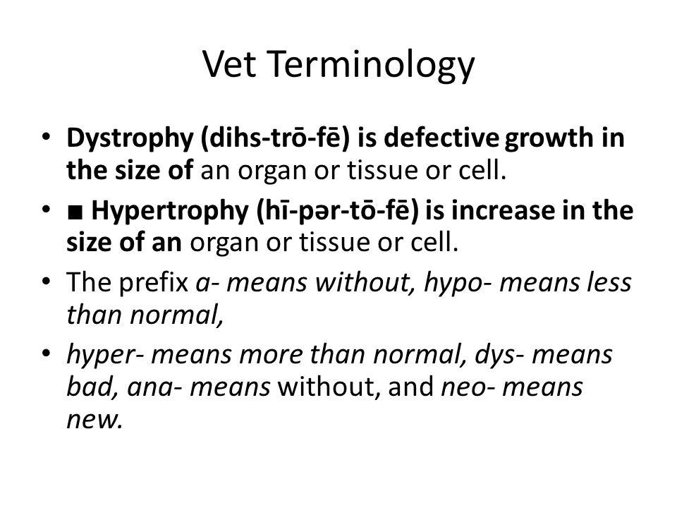 Vet Terminology Dystrophy (dihs-trō-fē) is defective growth in the size of an organ or tissue or cell. ■ Hypertrophy (hī-pər-tō-fē) is increase in the