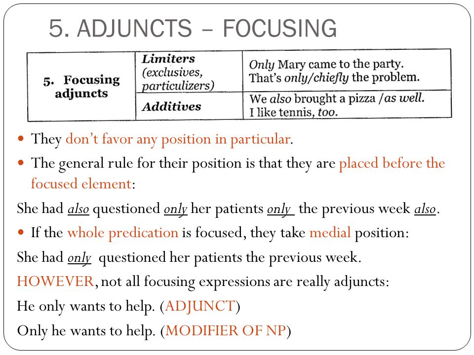 5. ADJUNCTS – FOCUSING They don't favor any position in particular.