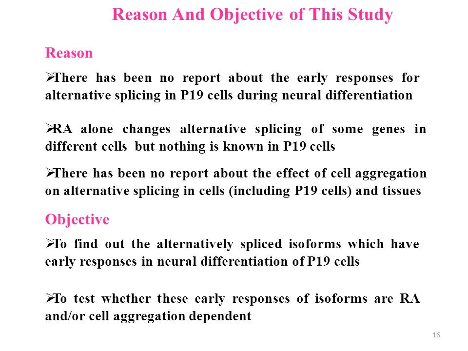 Reason And Objective of This Study  There has been no report about the early responses for alternative splicing in P19 cells during neural differentiation  To find out the alternatively spliced isoforms which have early responses in neural differentiation of P19 cells  To test whether these early responses of isoforms are RA and/or cell aggregation dependent Reason Objective  RA alone changes alternative splicing of some genes in different cells but nothing is known in P19 cells  There has been no report about the effect of cell aggregation on alternative splicing in cells (including P19 cells) and tissues 16