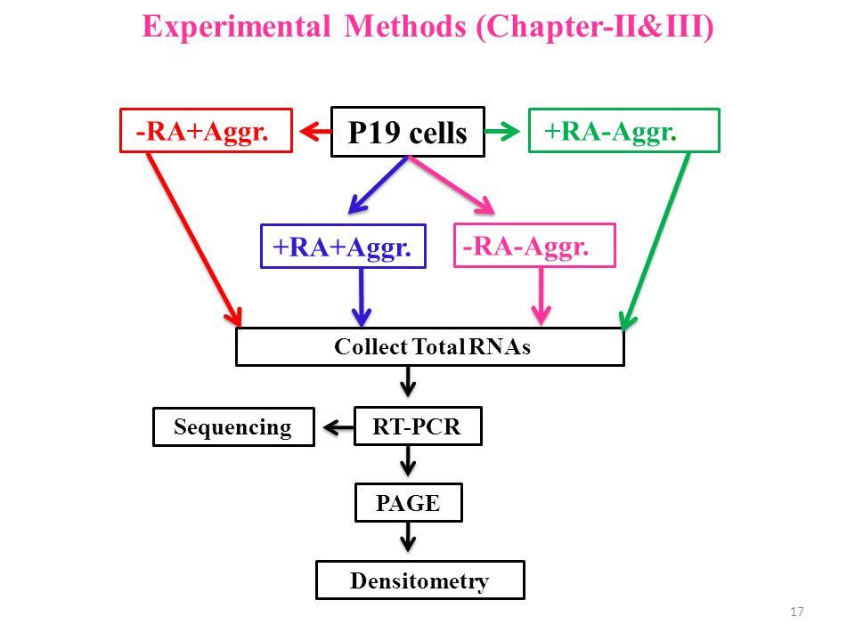 Experimental Methods (Chapter-II&III) P19 cells +RA+Aggr.