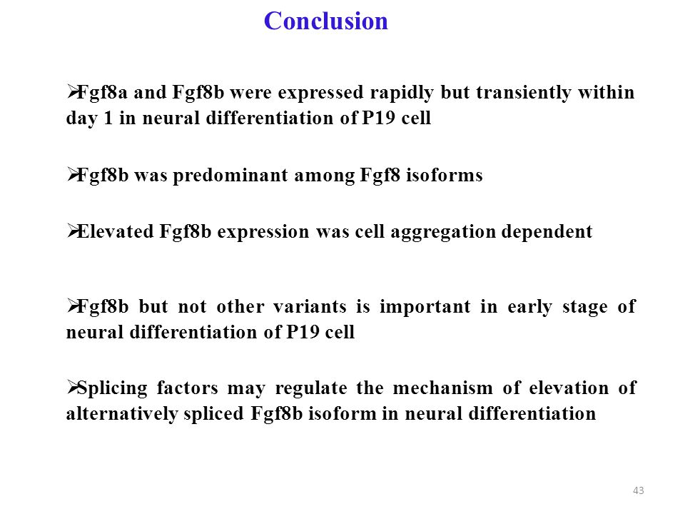 Conclusion  Fgf8a and Fgf8b were expressed rapidly but transiently within day 1 in neural differentiation of P19 cell  Fgf8b was predominant among Fgf8 isoforms  Elevated Fgf8b expression was cell aggregation dependent  Fgf8b but not other variants is important in early stage of neural differentiation of P19 cell  Splicing factors may regulate the mechanism of elevation of alternatively spliced Fgf8b isoform in neural differentiation 43