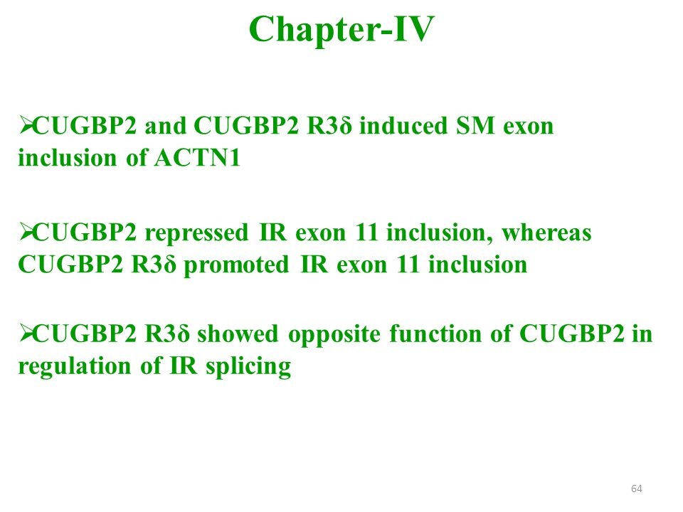  CUGBP2 and CUGBP2 R3δ induced SM exon inclusion of ACTN1 Chapter-IV  CUGBP2 R3δ showed opposite function of CUGBP2 in regulation of IR splicing  CUGBP2 repressed IR exon 11 inclusion, whereas CUGBP2 R3δ promoted IR exon 11 inclusion 64