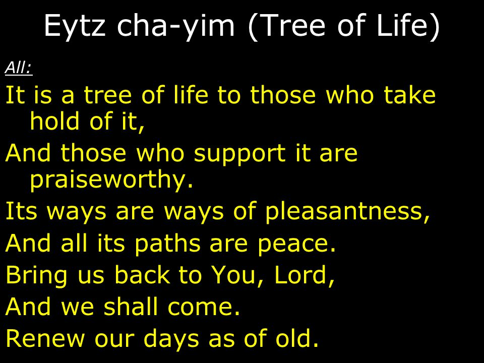 All: It is a tree of life to those who take hold of it, And those who support it are praiseworthy. Its ways are ways of pleasantness, And all its path
