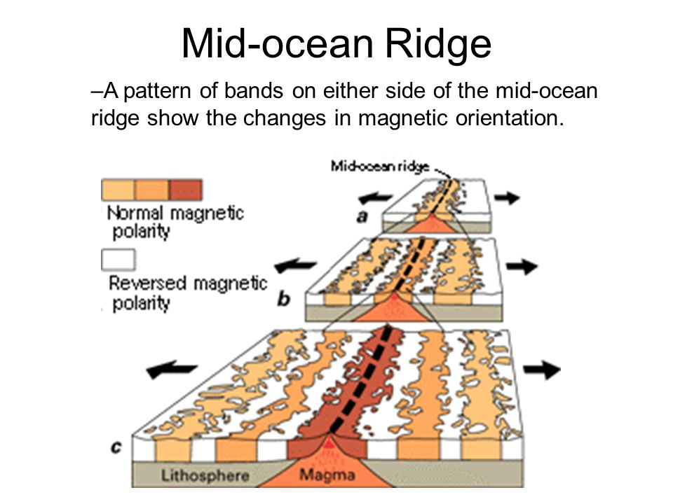 Mid-ocean Ridges –Rocks at the center of the mid-ocean ridge are the youngest.