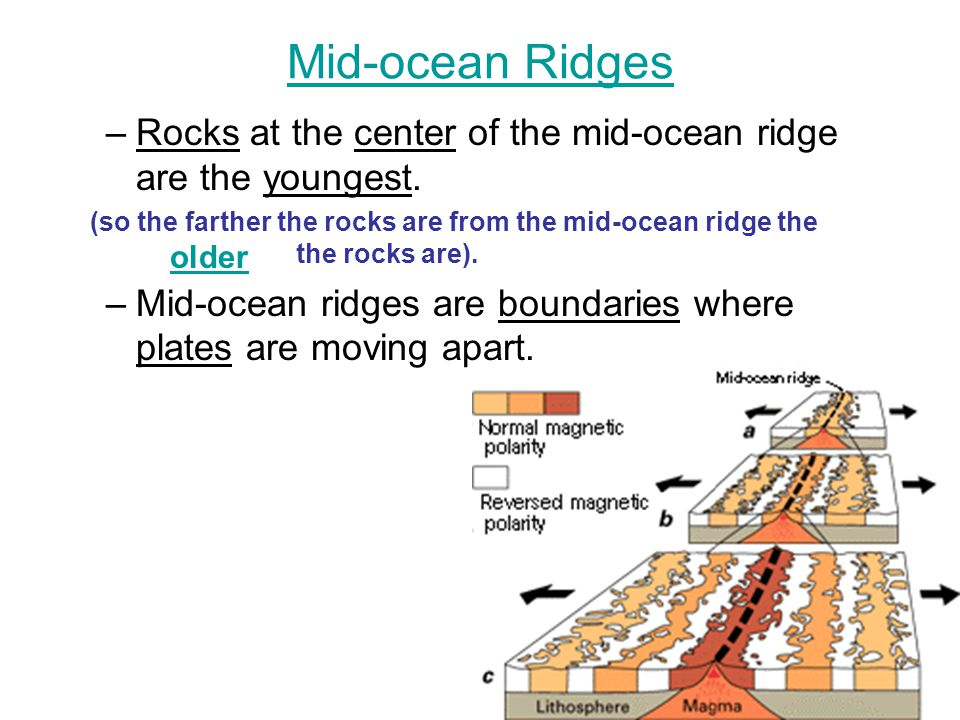 3 Main Hypothesis Which Cause of Plate Movement: Mantle Convection, Ridge Push, and Slab Pull