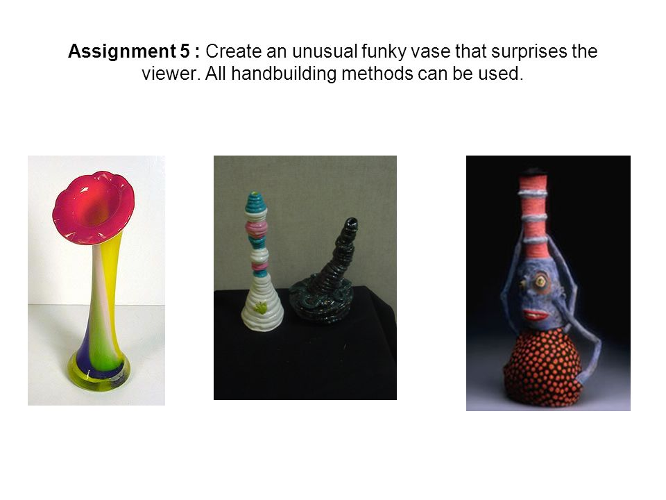 Assignment 5 : Create an unusual funky vase that surprises the viewer.