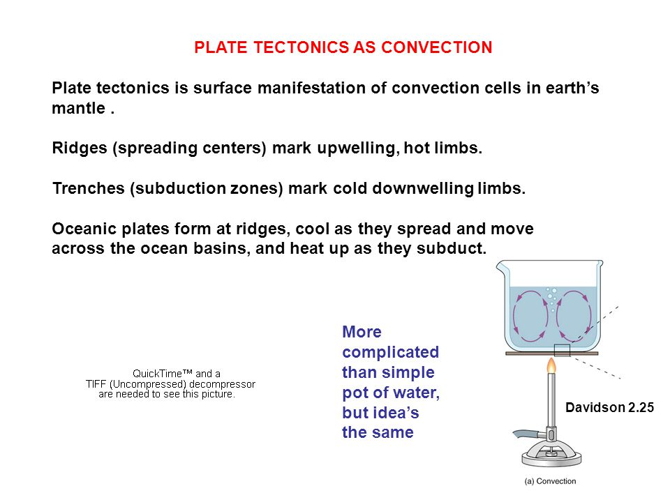 PLATE TECTONICS AS CONVECTION Plate tectonics is surface manifestation of convection cells in earth's mantle. Ridges (spreading centers) mark upwellin
