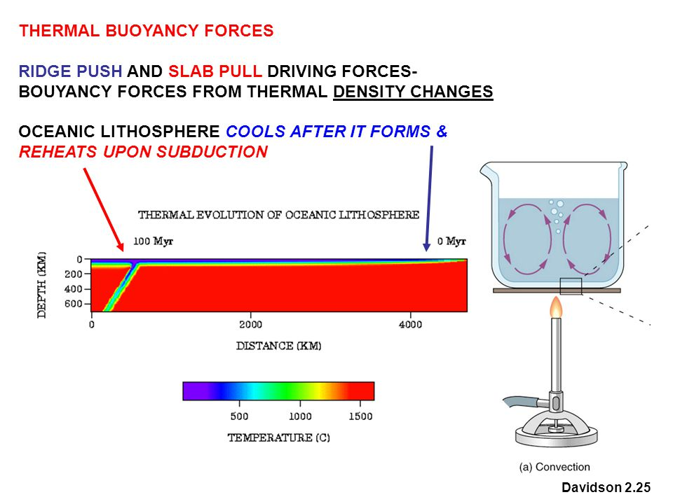 THERMAL BUOYANCY FORCES RIDGE PUSH AND SLAB PULL DRIVING FORCES- BOUYANCY FORCES FROM THERMAL DENSITY CHANGES OCEANIC LITHOSPHERE COOLS AFTER IT FORMS