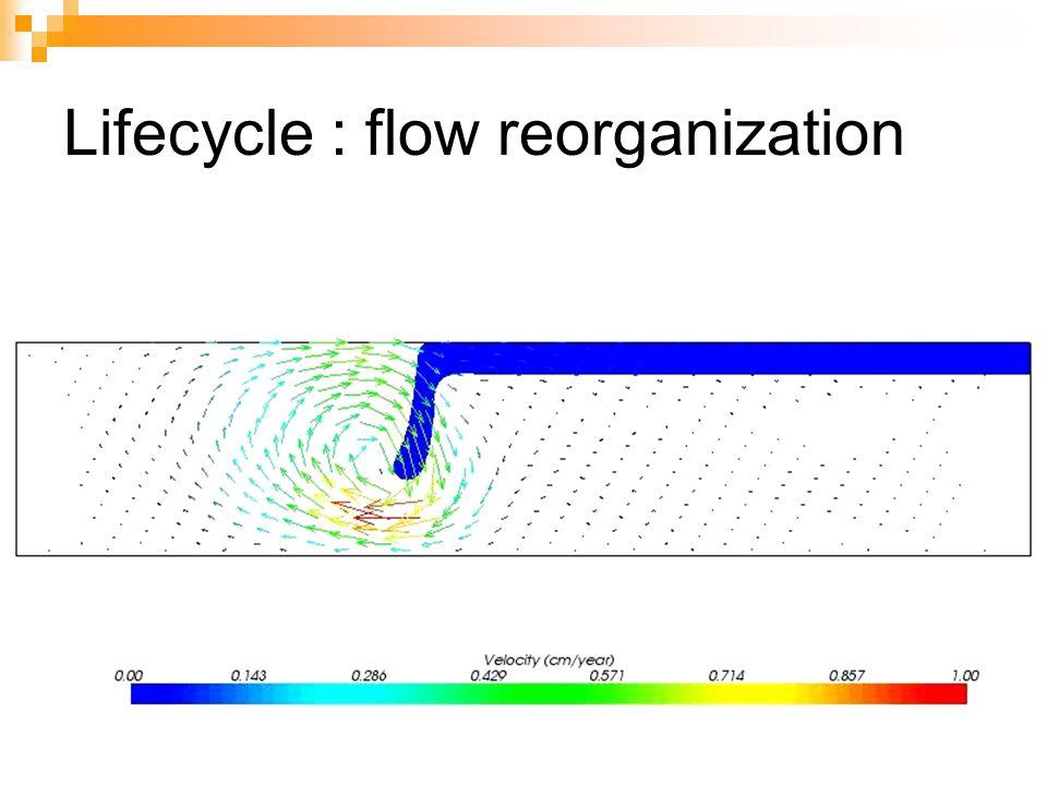 Lifecycle : flow reorganization