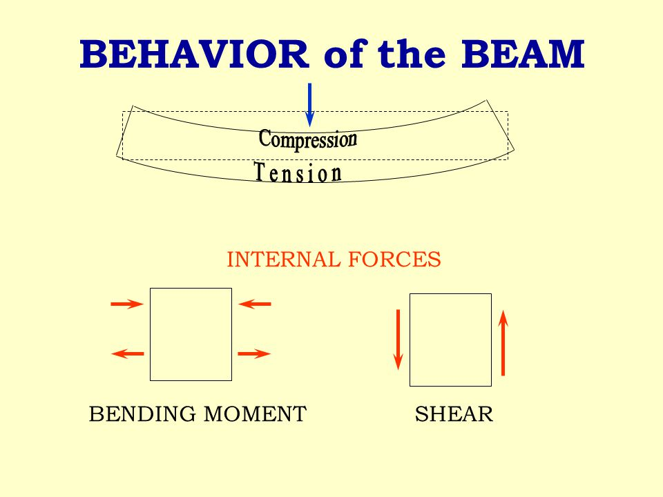 BEHAVIOR of the BEAM BENDING MOMENT SHEAR INTERNAL FORCES
