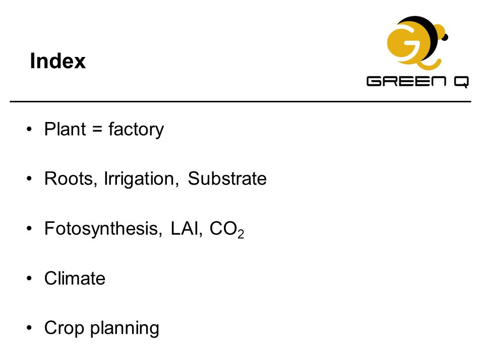 Index Plant = factory Roots, Irrigation, Substrate Fotosynthesis, LAI, CO 2 Climate Crop planning