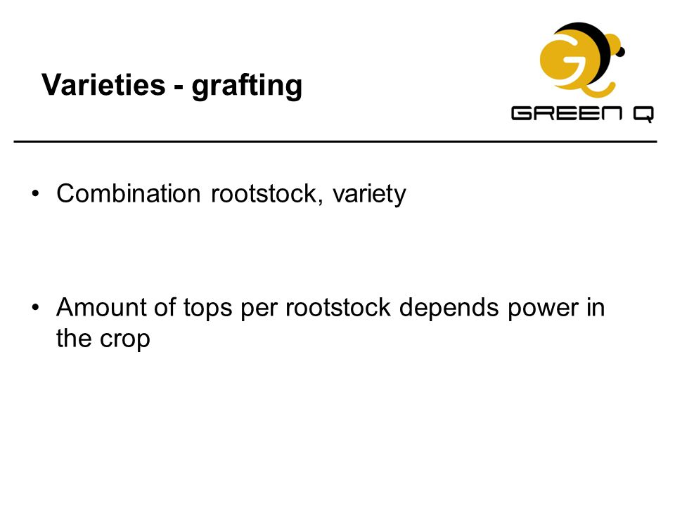 Varieties - grafting Combination rootstock, variety Amount of tops per rootstock depends power in the crop
