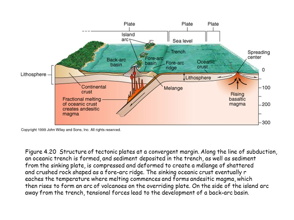 Figure 4.20 Structure of tectonic plates at a convergent margin.