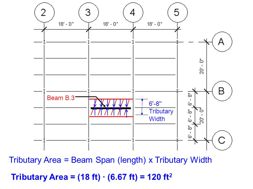 Beam B.3 6'-8'' Tributary Width Tributary Area = (18 ft) ∙ (6.67 ft) = 120 ft 2 Tributary Area = Beam Span (length) x Tributary Width