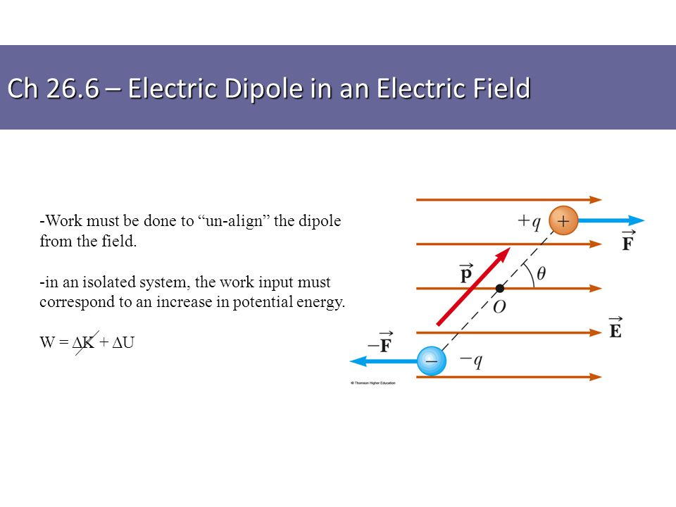 "-Work must be done to ""un-align"" the dipole from the field. -in an isolated system, the work input must correspond to an increase in potential energy."