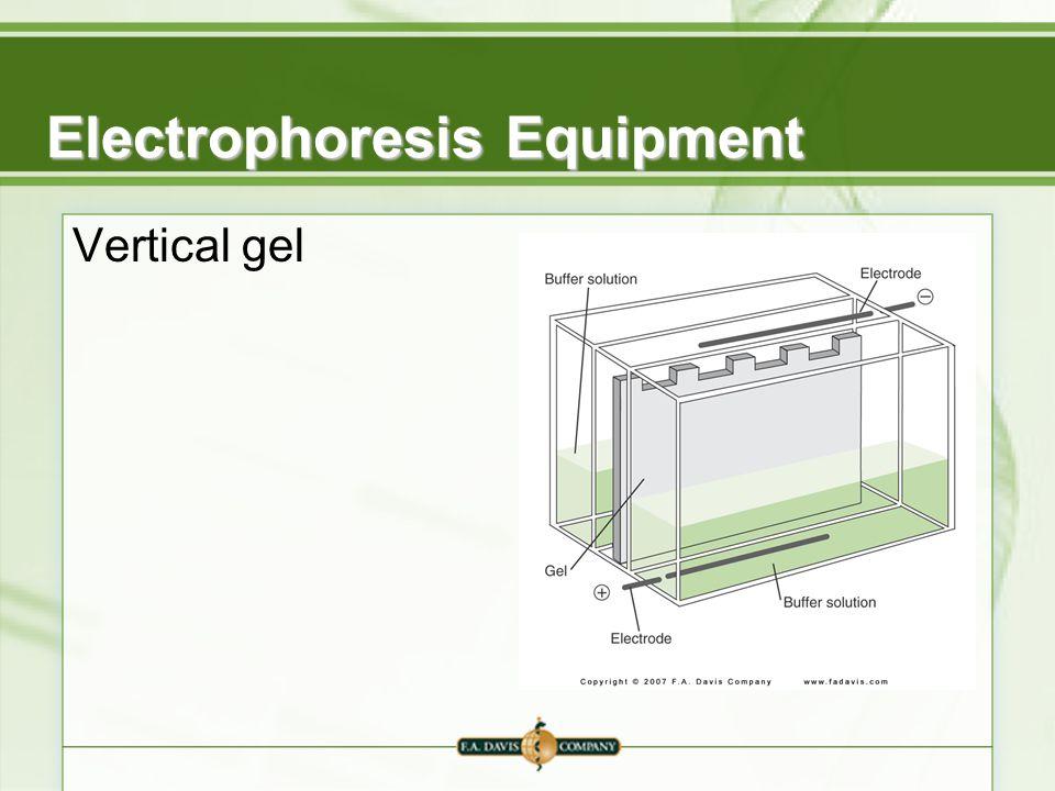 Electrophoresis Equipment Vertical gel