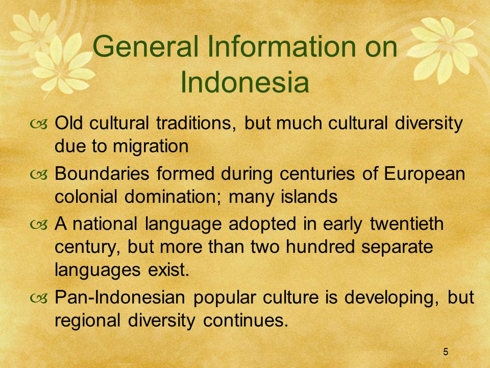 5 General Information on Indonesia  Old cultural traditions, but much cultural diversity due to migration  Boundaries formed during centuries of European colonial domination; many islands  A national language adopted in early twentieth century, but more than two hundred separate languages exist.