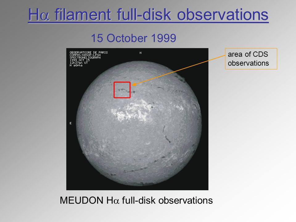 H  filament full-disk observations MEUDON H  full-disk observations 15 October 1999 area of CDS observations