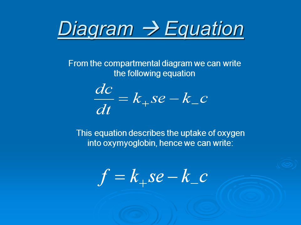 Diagram  Equation From the compartmental diagram we can write the following equation This equation describes the uptake of oxygen into oxymyoglobin, hence we can write: