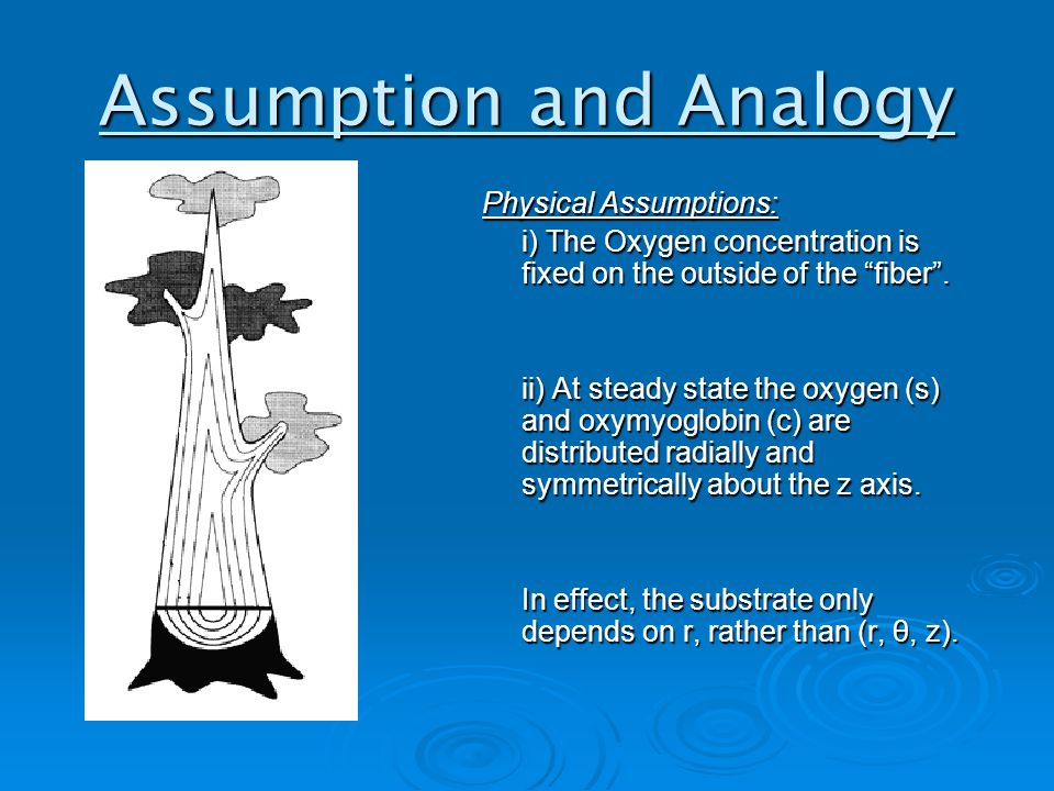 Assumption and Analogy Physical Assumptions: i) The Oxygen concentration is fixed on the outside of the fiber .