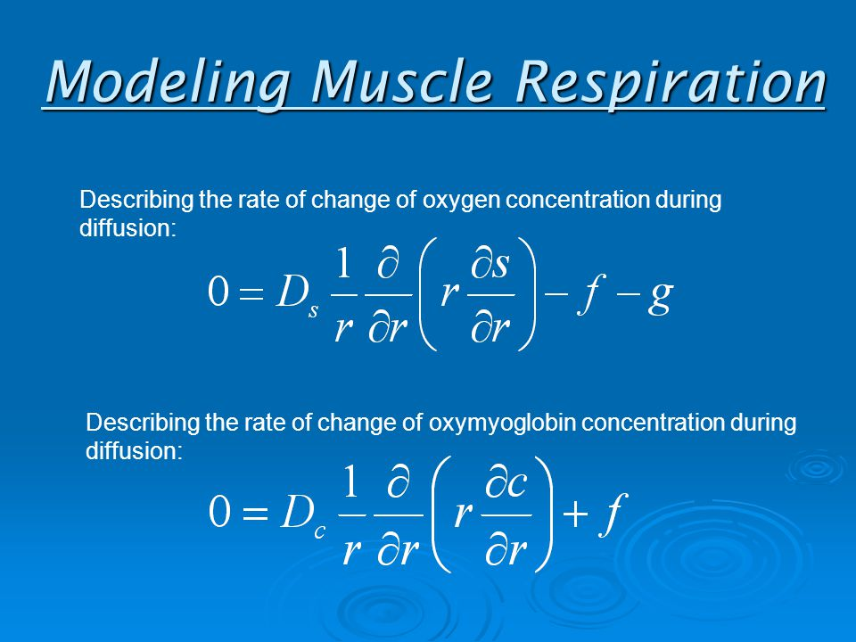 Modeling Muscle Respiration Describing the rate of change of oxygen concentration during diffusion: Describing the rate of change of oxymyoglobin concentration during diffusion: